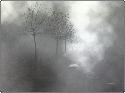camino-niebla.jpg